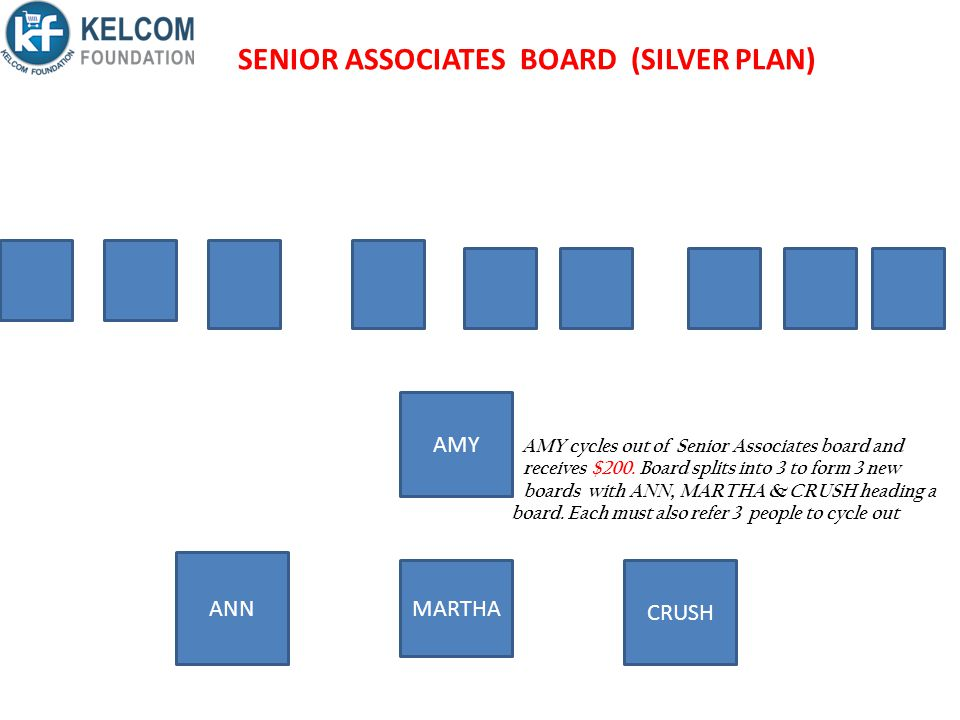 SENIOR ASSOCIATES BOARD (SILVER PLAN)