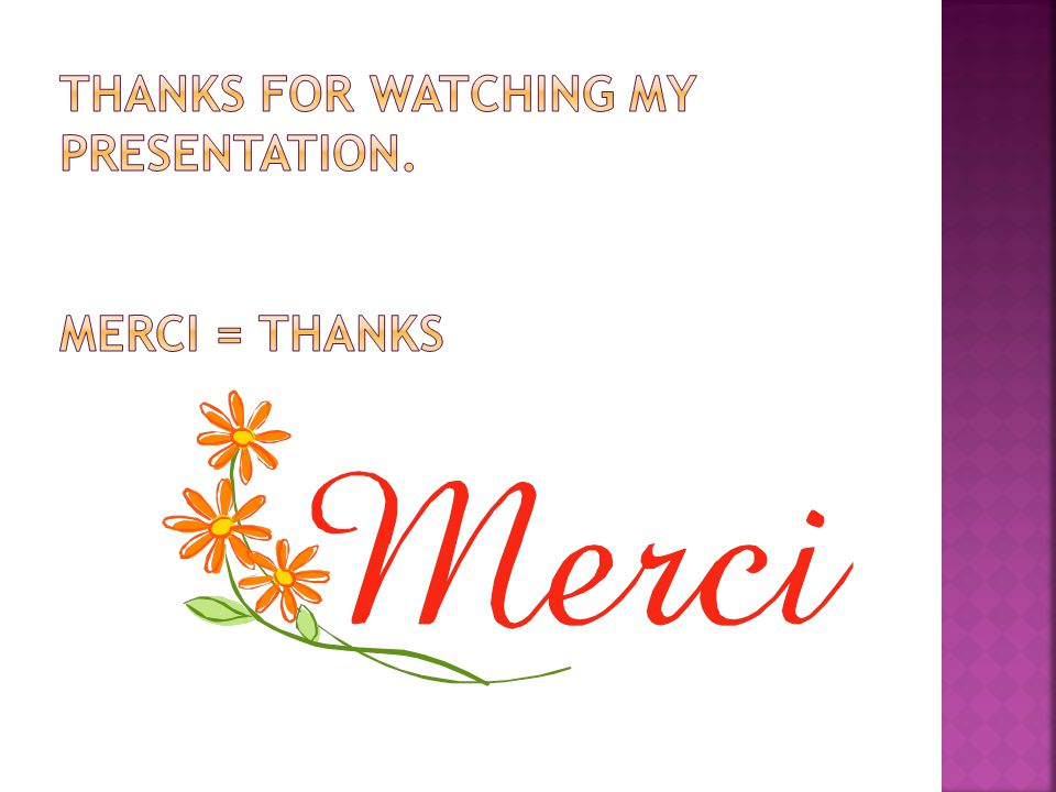 Thanks for watching my presentation. Merci = Thanks
