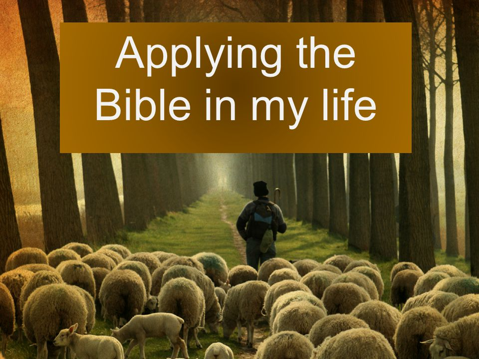 Applying the Bible in my life