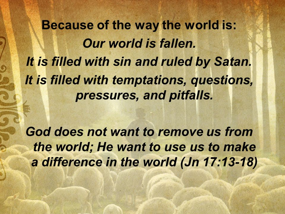 Because of the way the world is: Our world is fallen