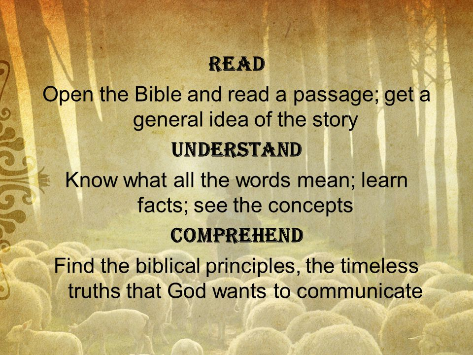 Read Open the Bible and read a passage; get a general idea of the story Understand Know what all the words mean; learn facts; see the concepts Comprehend Find the biblical principles, the timeless truths that God wants to communicate