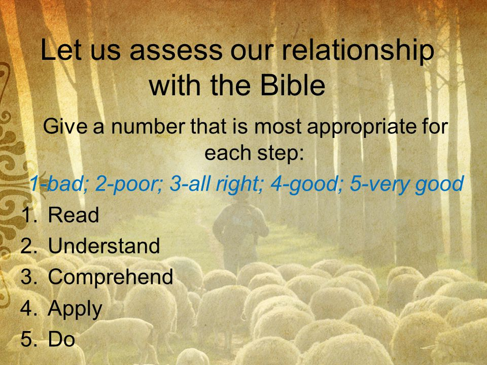 Let us assess our relationship with the Bible
