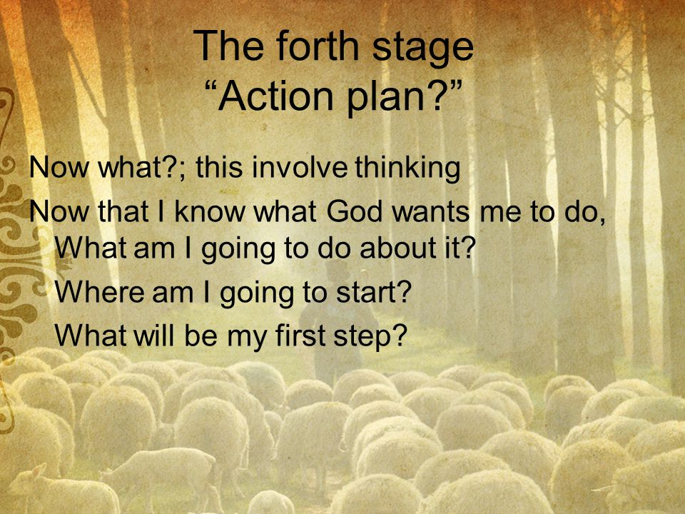 The forth stage Action plan