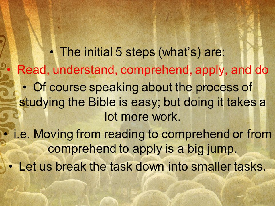 The initial 5 steps (what's) are: