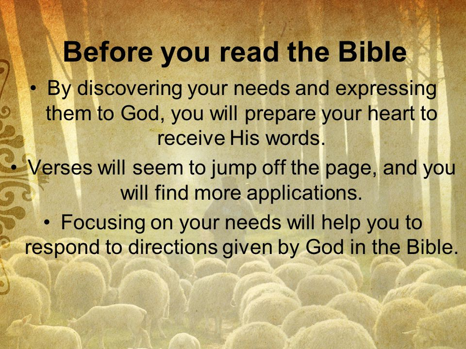 Before you read the Bible