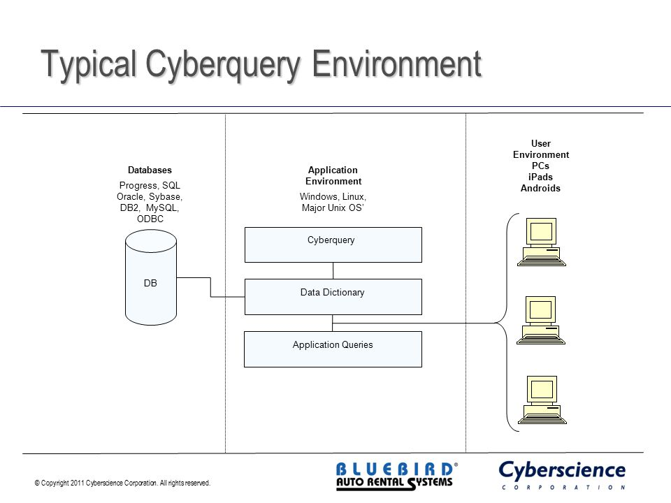 Typical Cyberquery Environment