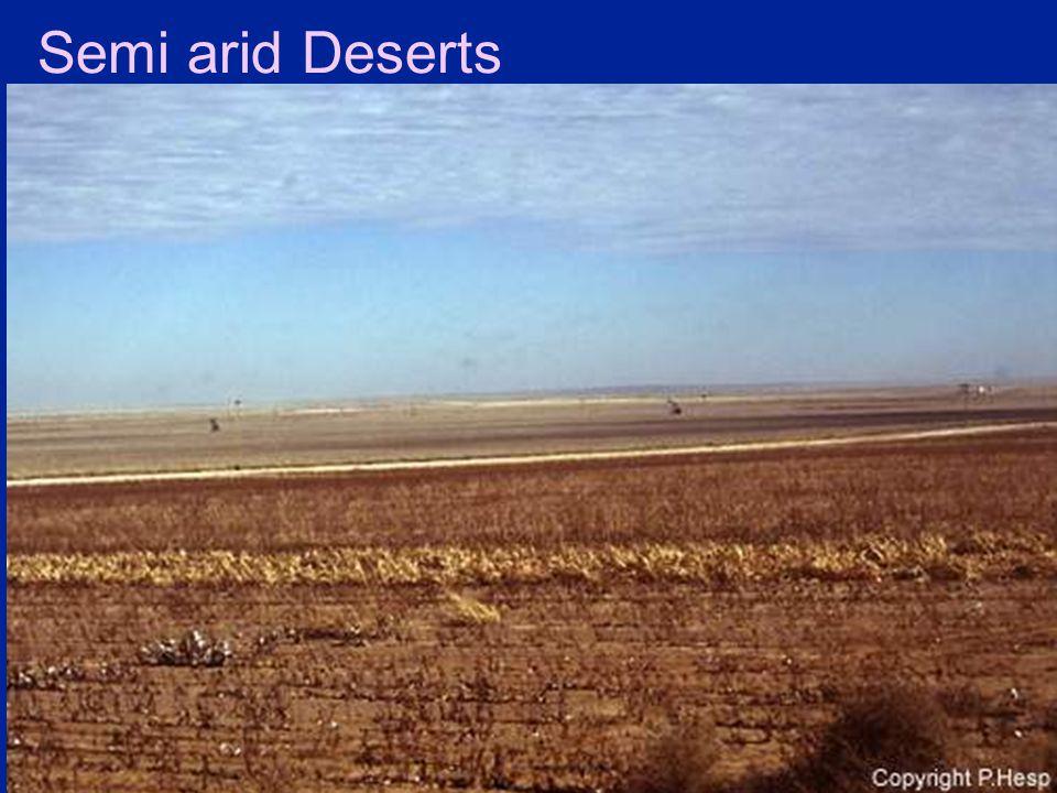 Semi arid Deserts