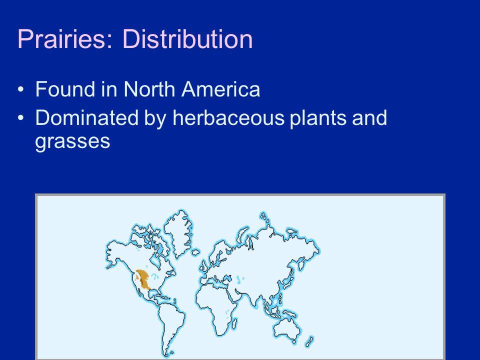 Prairies: Distribution
