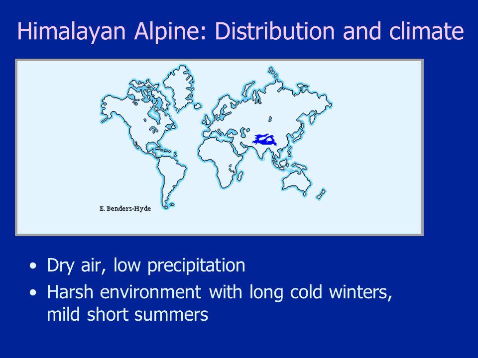 Himalayan Alpine: Distribution and climate