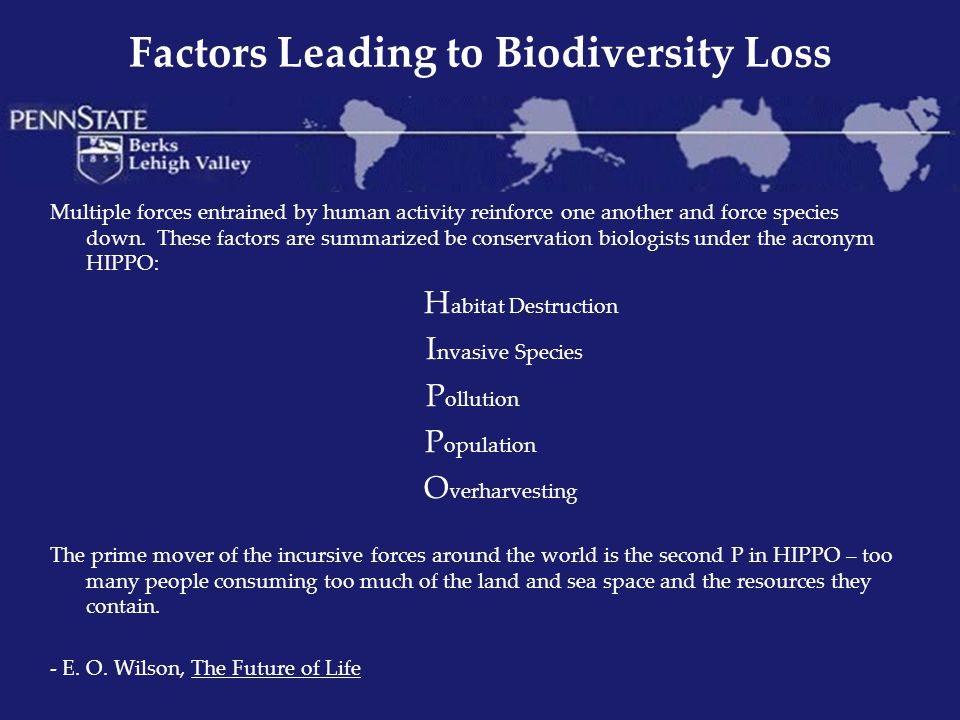 Factors Leading to Biodiversity Loss