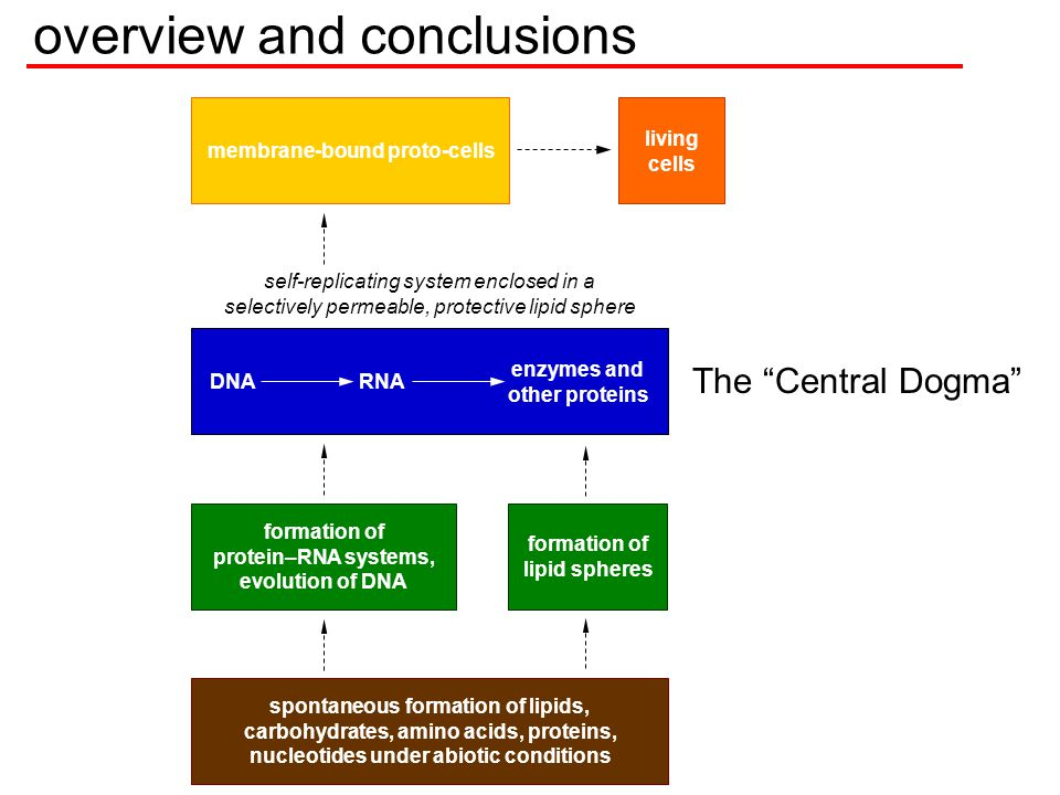 overview and conclusions