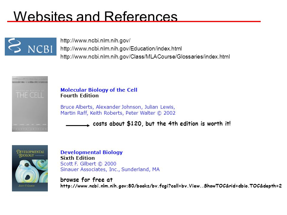 Websites and References