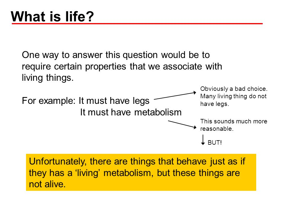 What is life One way to answer this question would be to require certain properties that we associate with living things.