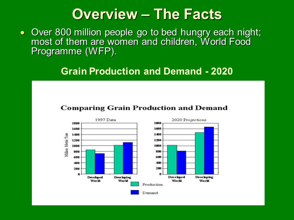 Grain Production and Demand - 2020