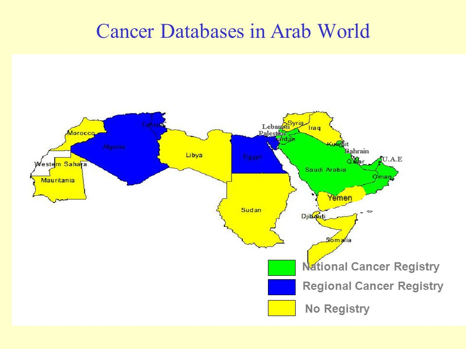 Cancer Databases in Arab World