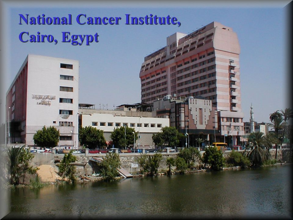 National Cancer Institute,