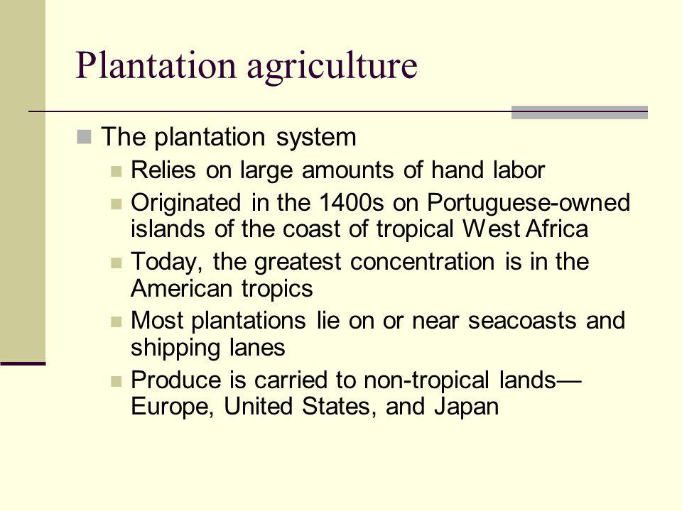 Plantation agriculture