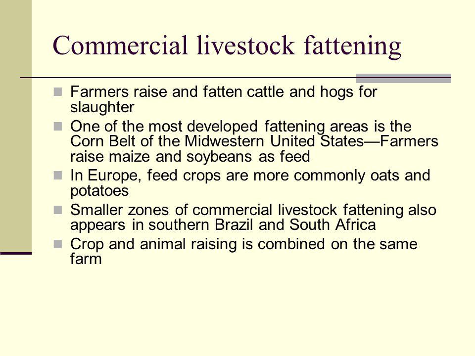 Commercial livestock fattening
