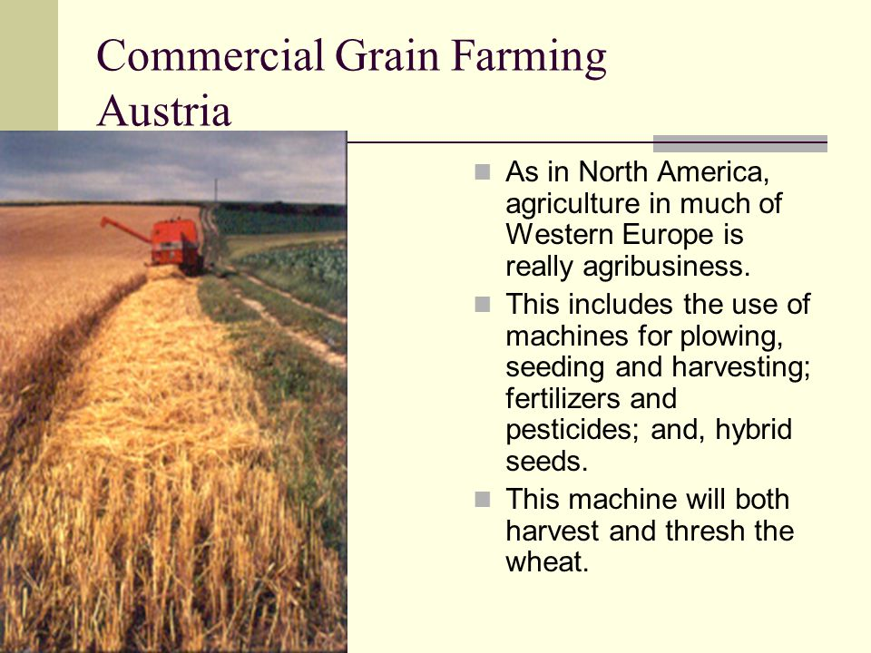 Commercial Grain Farming Austria