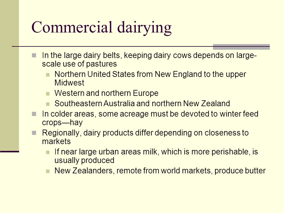 Commercial dairying In the large dairy belts, keeping dairy cows depends on large-scale use of pastures.