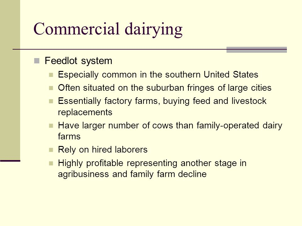 Commercial dairying Feedlot system