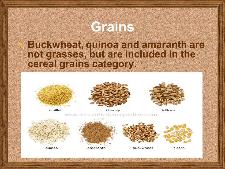Grains Buckwheat, quinoa and amaranth are not grasses, but are included in the cereal grains category.