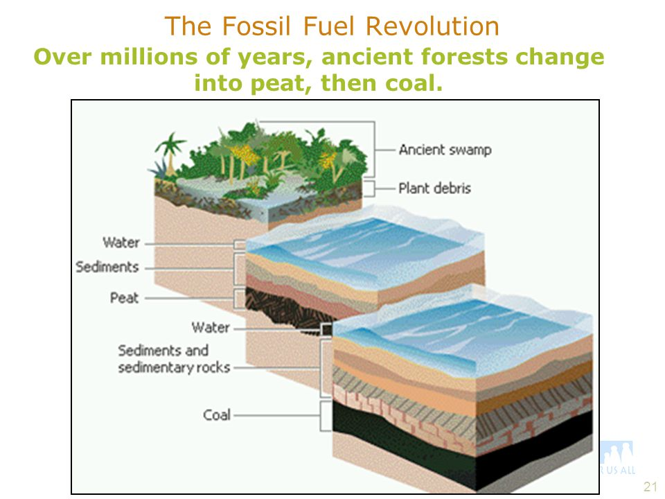 The Fossil Fuel Revolution