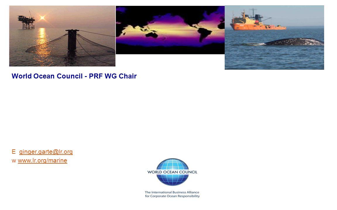 Thank You ! www.oceancouncil.org World Ocean Council - PRF WG Chair