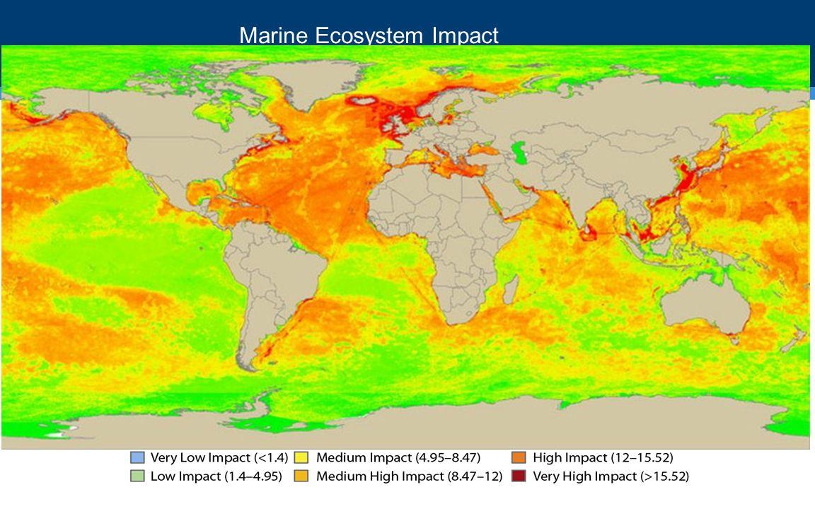 Marine Ecosystem Impact