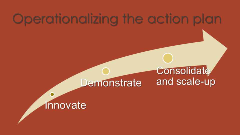 Operationalizing the action plan