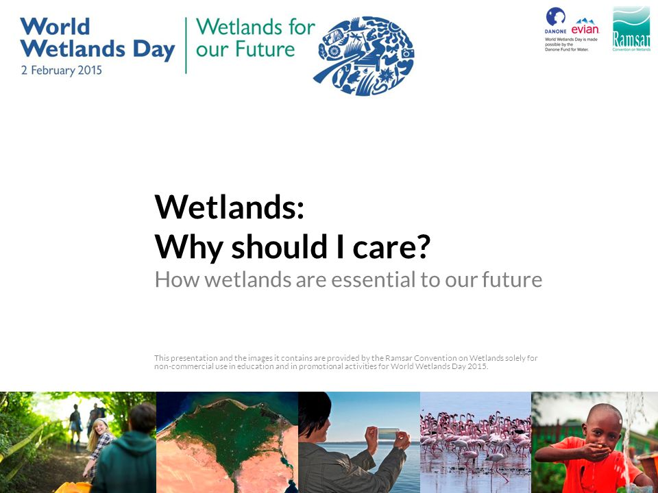 Wetlands: Why should I care