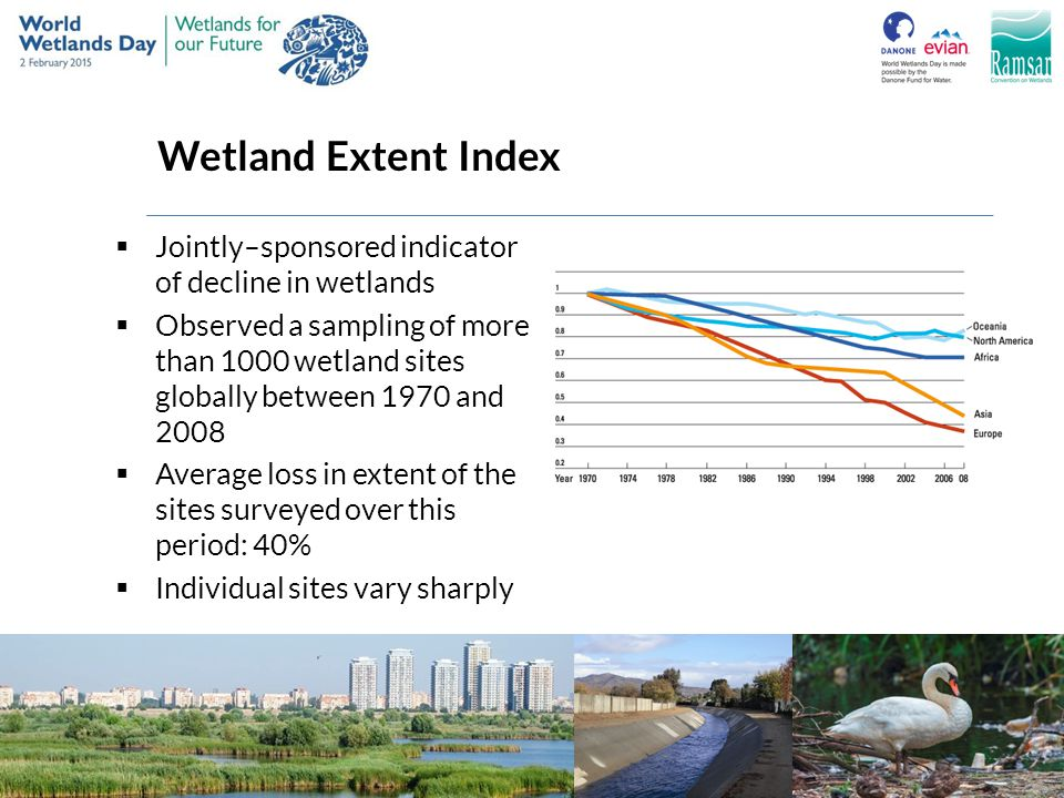 Wetland Extent Index Jointly–sponsored indicator of decline in wetlands.