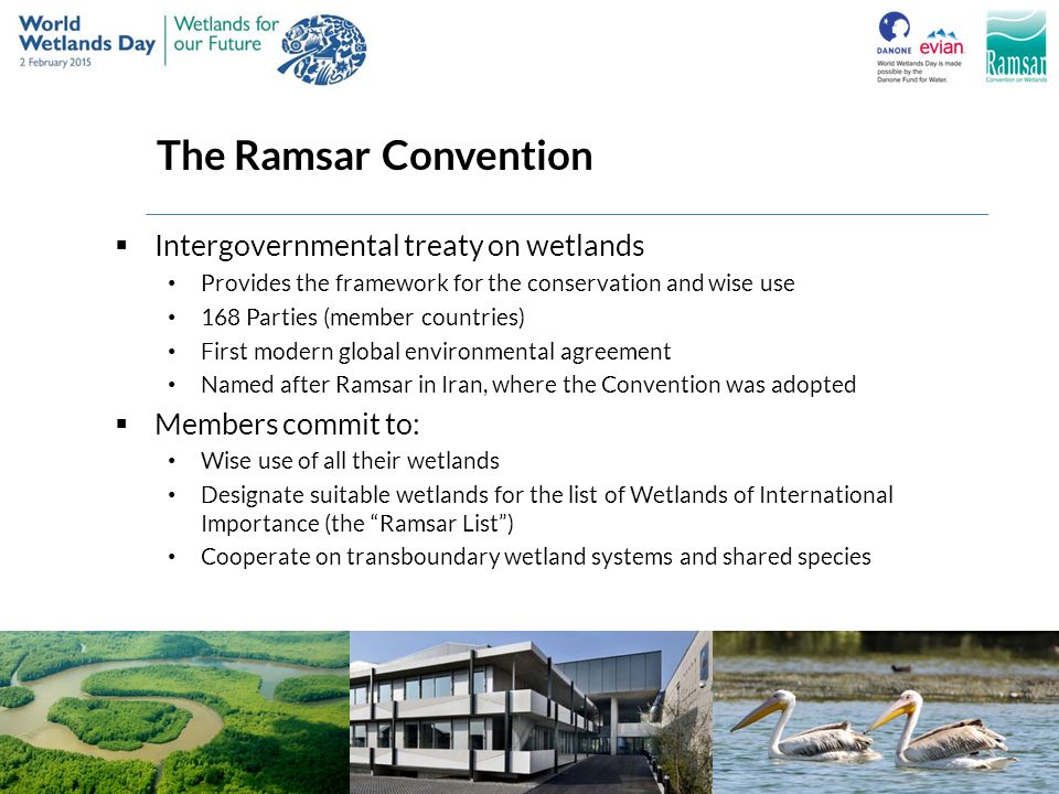 The Ramsar Convention Intergovernmental treaty on wetlands
