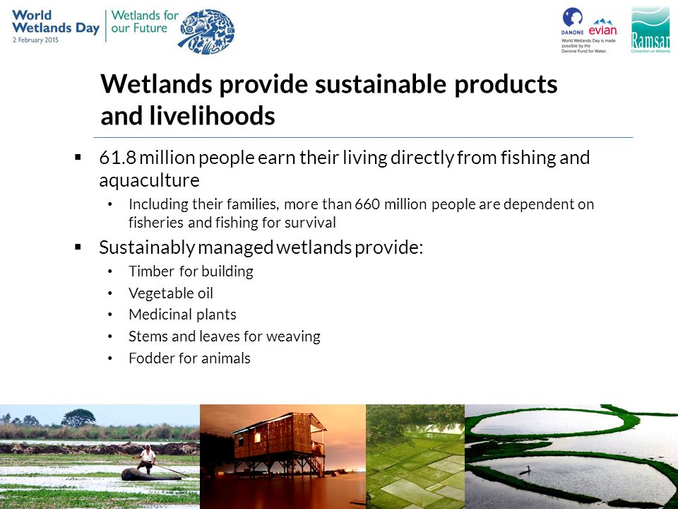 Wetlands provide sustainable products and livelihoods
