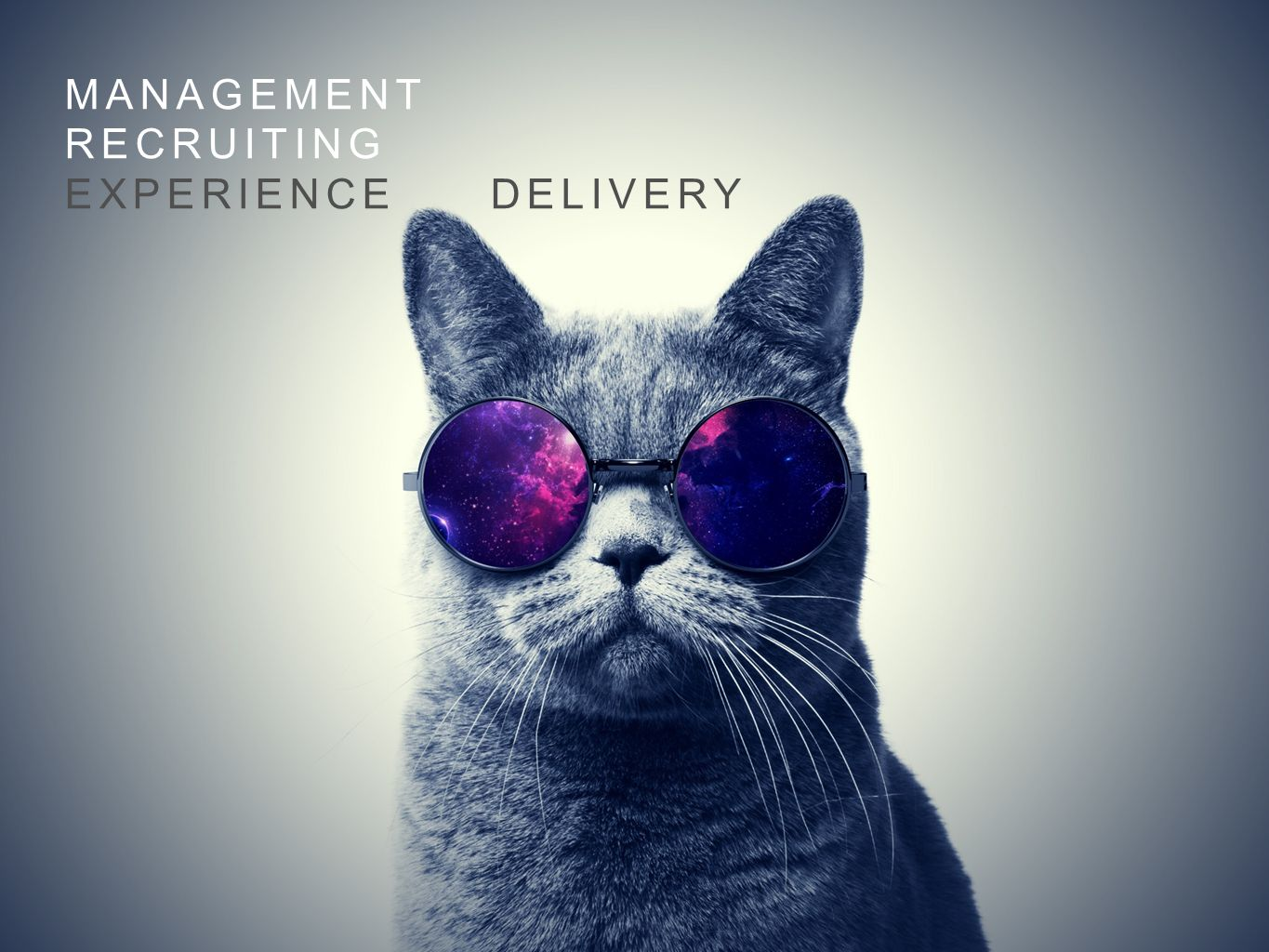 Management Recruiting Experience delivery