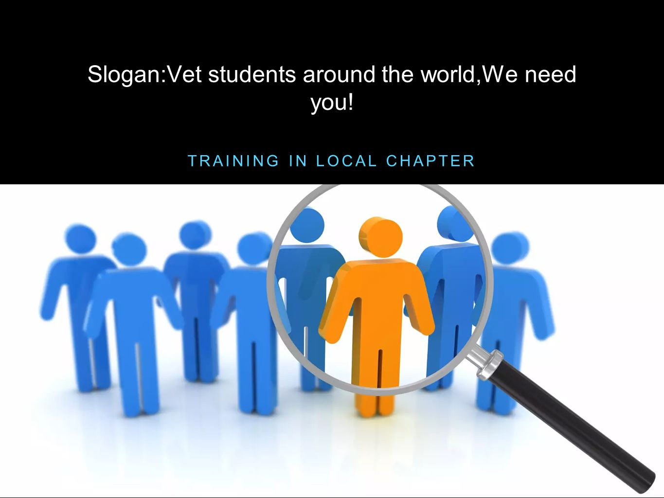 Slogan:Vet students around the world,We need you!