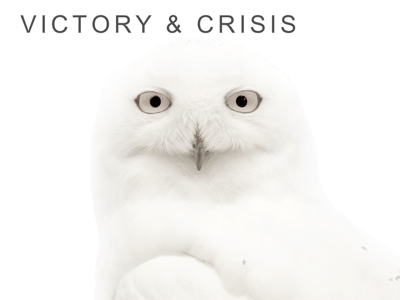 Victory & crisis
