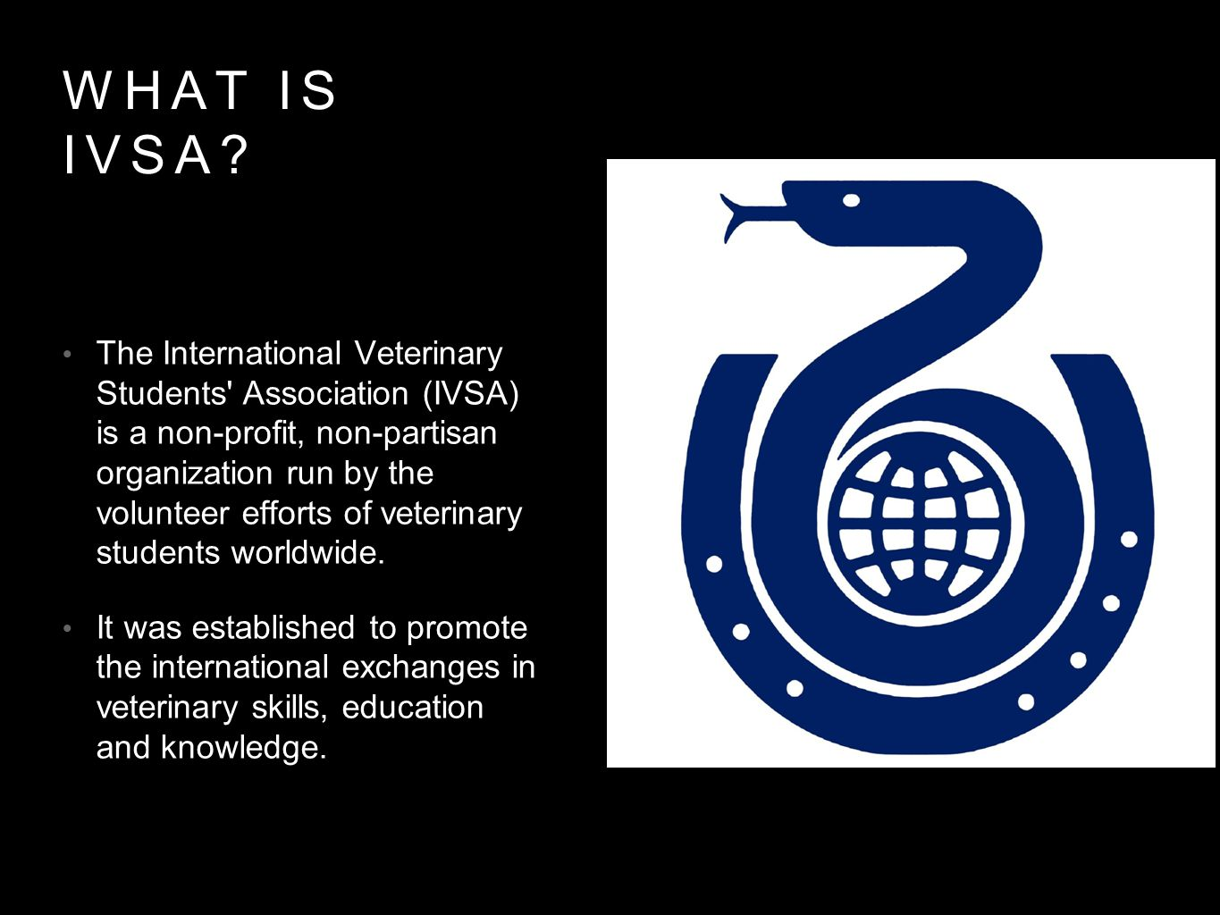 What is IVSA