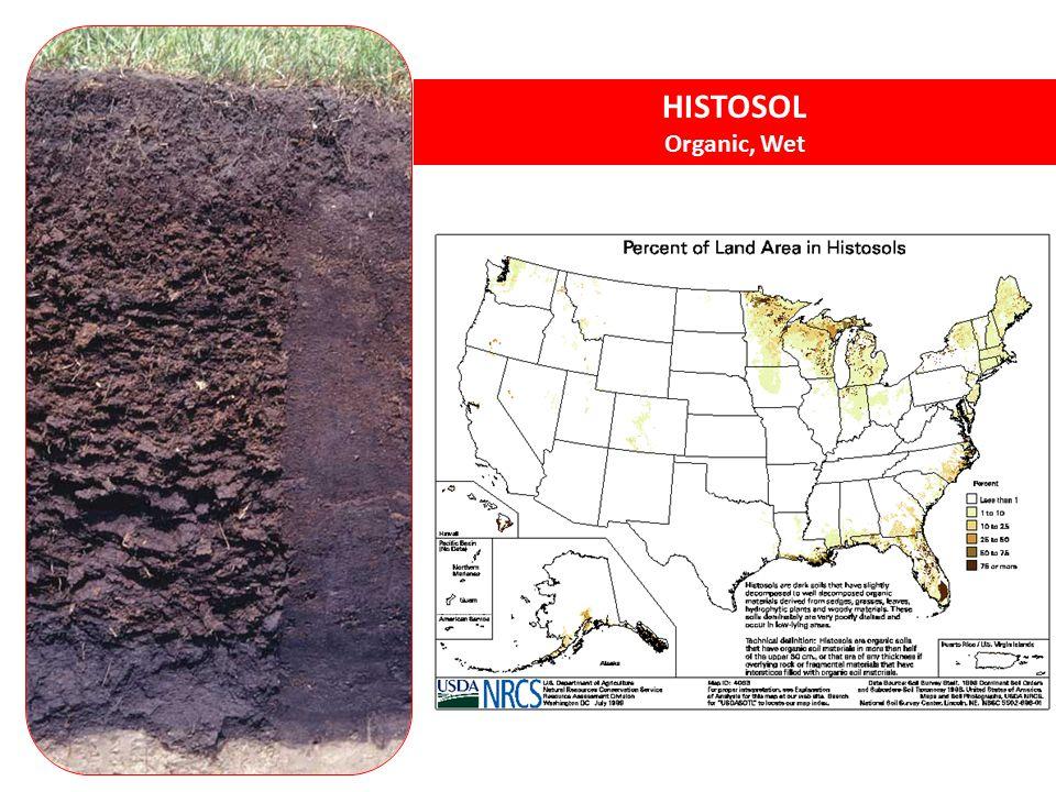 HISTOSOL Organic, Wet Histosols - organic soils