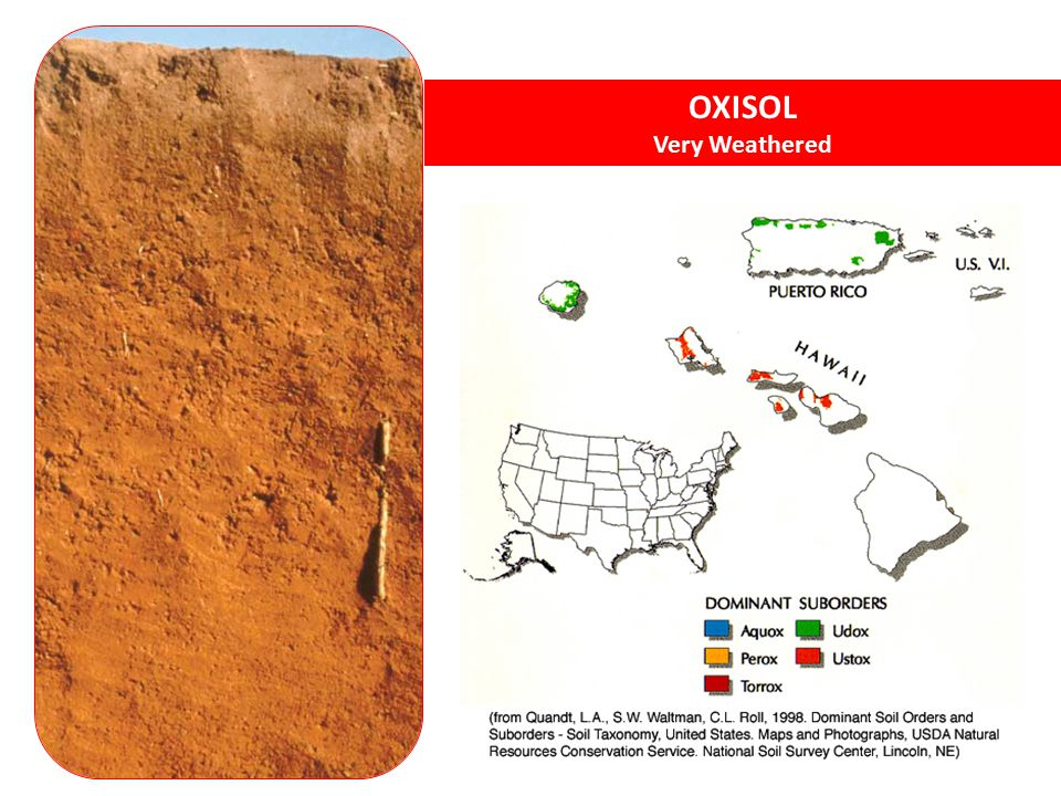 OXISOL Very Weathered. Oxisols - very weathered soils of tropical and subtropical environments. http://soils.cals.uidaho.edu/soilorders/oxisols.htm.