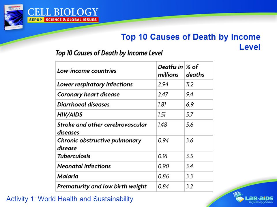 Top 10 Causes of Death by Income Level