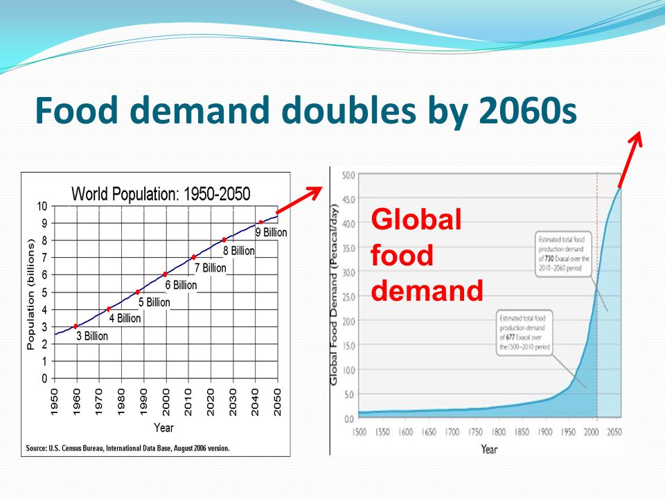 Food demand doubles by 2060s