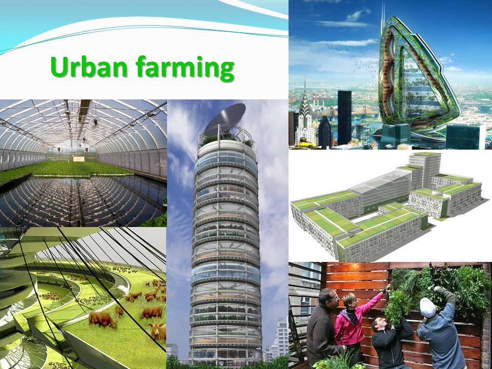 Urban farming We must green our cities, developing entirely new urban-based food production systems, both large- and small-scale, high-tech and low.