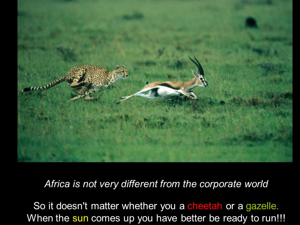 Africa is not very different from the corporate world