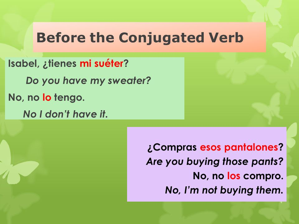 Before the Conjugated Verb
