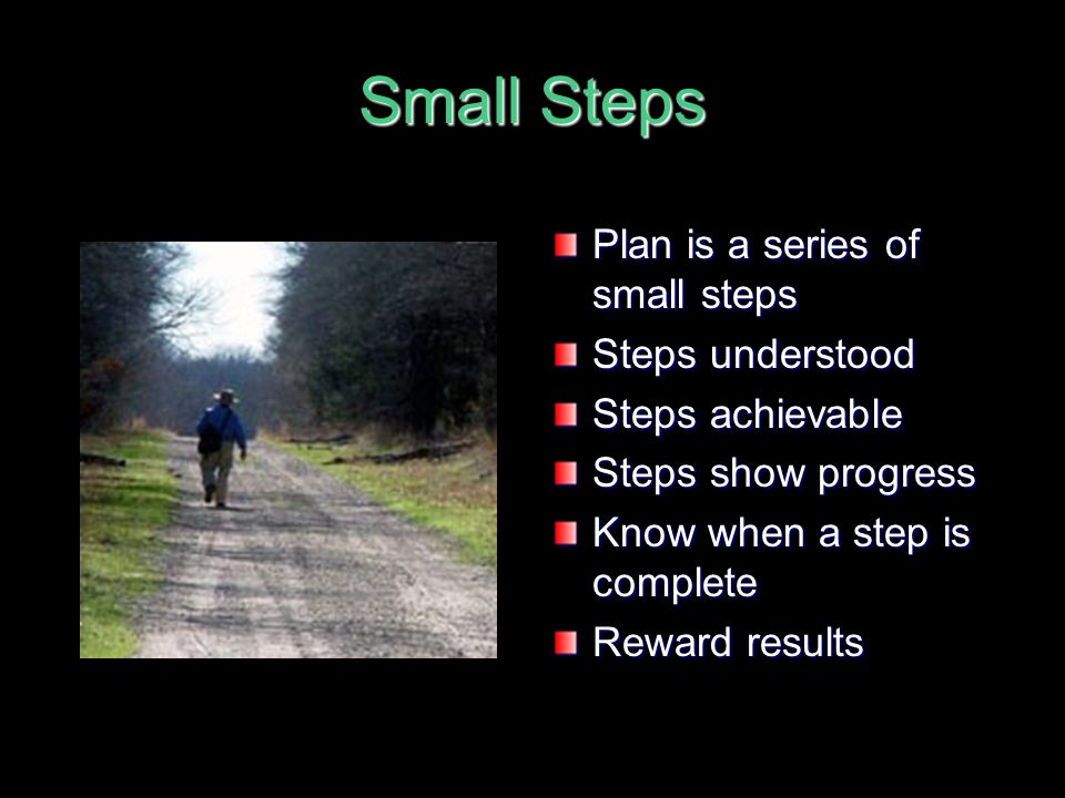Small Steps Plan is a series of small steps Steps understood