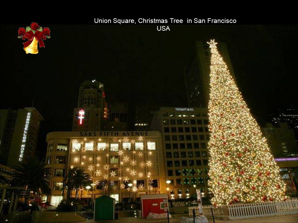 Union Square, Christmas Tree in San Francisco