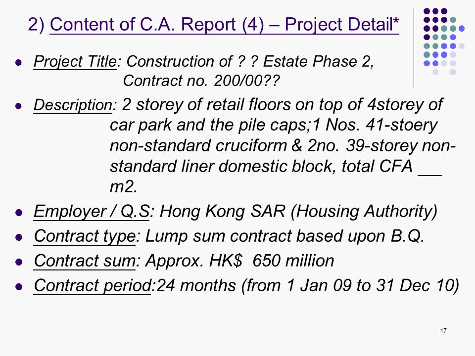 2) Content of C.A. Report (4) – Project Detail*
