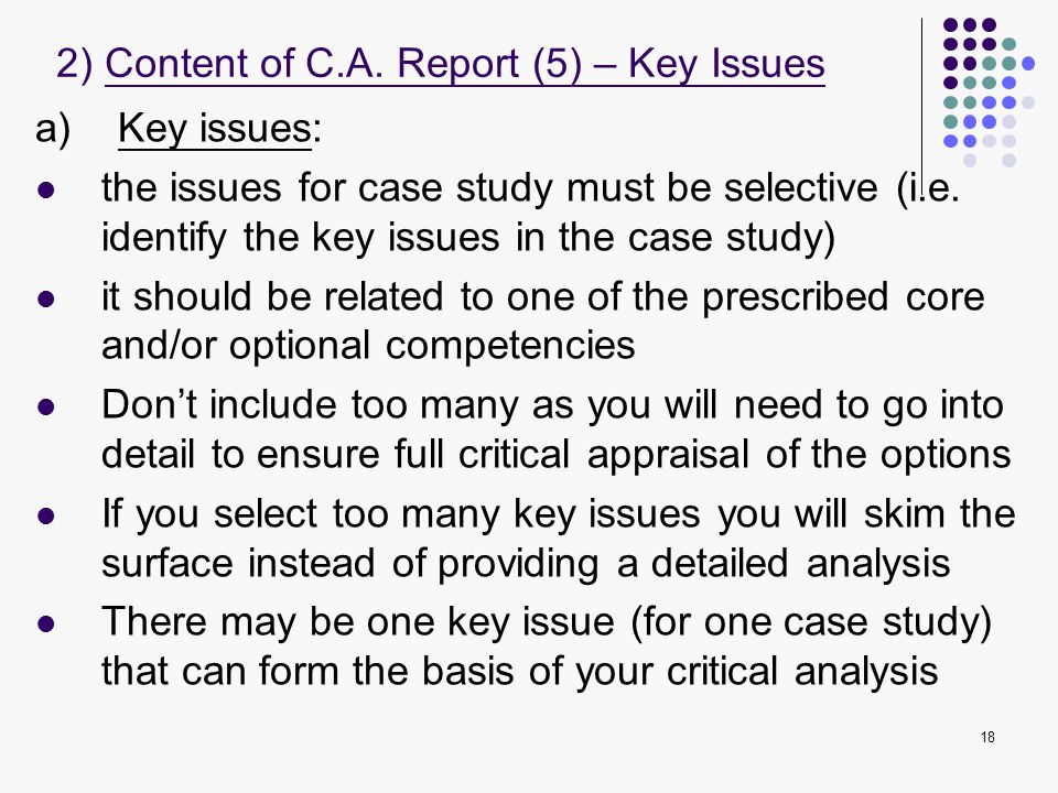 2) Content of C.A. Report (5) – Key Issues