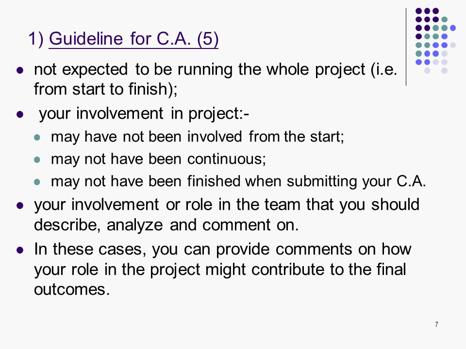 1) Guideline for C.A. (5) not expected to be running the whole project (i.e. from start to finish);